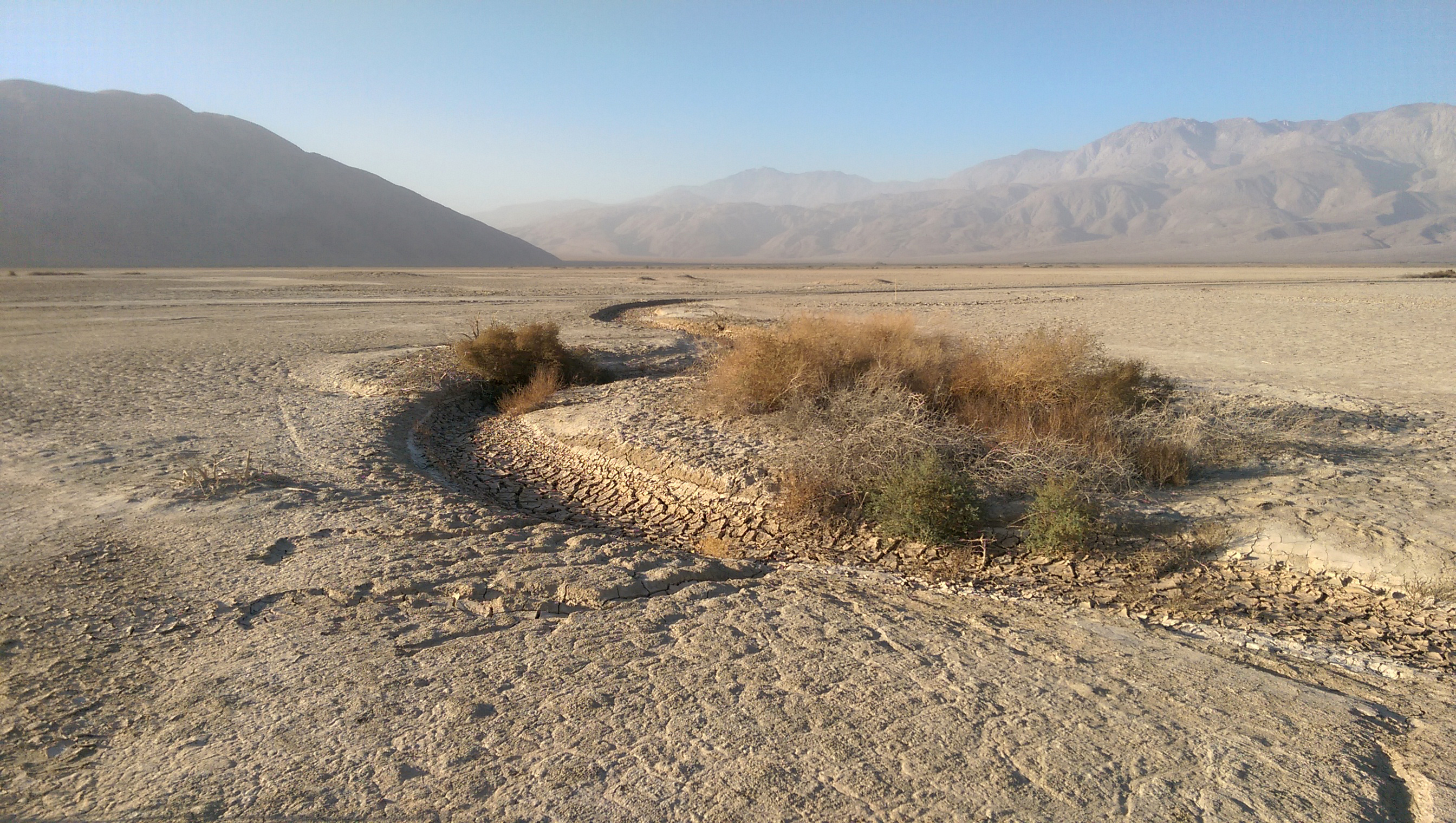 photo - Clark Dry Lake, Anza Borrego