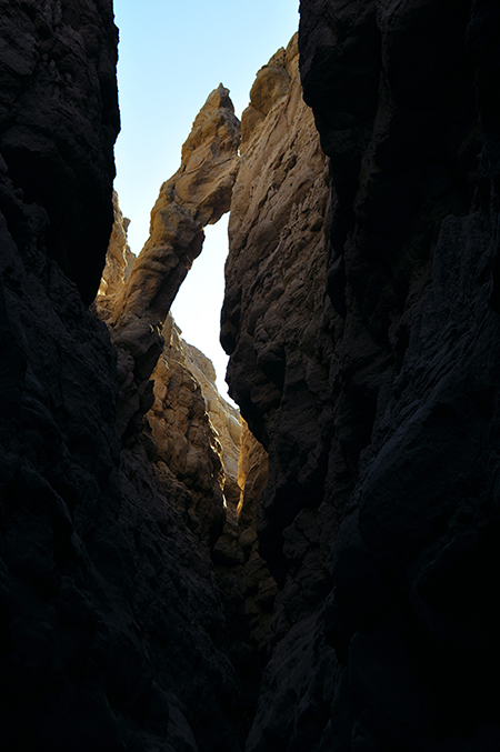 photo - anza borrego