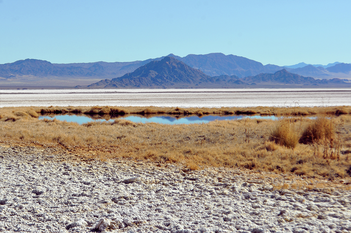 photo - Zzyzx / Soda Lake